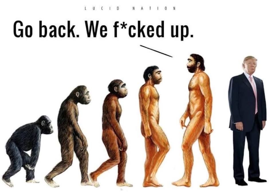 Humorous take on evolution